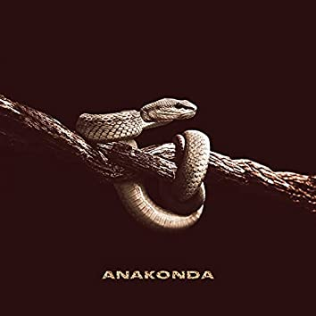 Anakonda (Prod. By VisaGangBeatz)