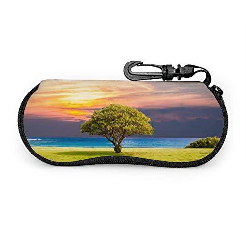Dusk Art Lake - Funda para gafas de sol portátil con cremallera y funda para gafas de lectura