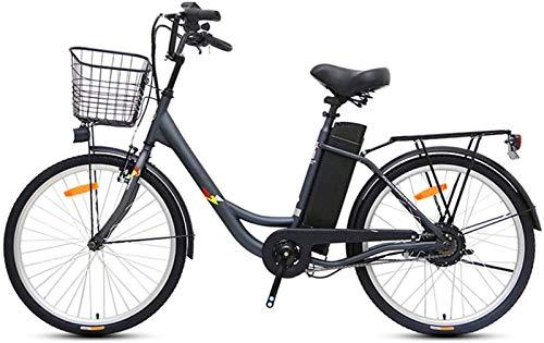 RDJM Bici electrica, Bicicletas eléctricas for Adultos, de 24 Pulgadas Bicicleta eléctrica...