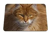 22cmx18cm マウスパッド (猫の顔の毛皮のような表情) パターンカスタムの マウスパッド