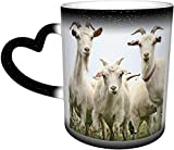 Hirola Tazas cambiantes de calor divertidas, cabra personalizada sensible al calor color cambiante taza taza de té de leche tazas de café mágicas