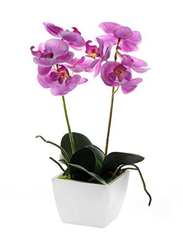 CB Imports - Orquídea Artificial (33 cm), Color Rosa