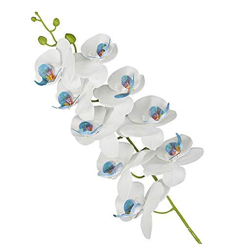 Oce180anYLVUK Flor Artificial, 1pc Impresión 3D Flor Artificial Mariposa Orquídea Jardín Fiesta De Bricolaje Decoración De La Boda Azul Blanco