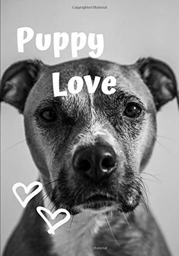 Puppy Love: Valentine Bullet Journal