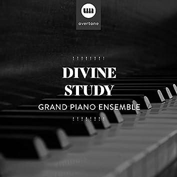 ! ! ! ! ! ! ! ! Divine Study Grand Piano Ensemble ! ! ! ! ! ! ! !