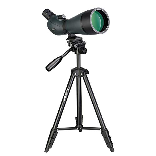 Svbony SV19 Cannocchiale 20-60x80 con Treppiedi, HD Telescopio Spotting Scope Impermeabile Prisma di Porro Monocolo Professionale Potente per Tiro al Bersaglio, Birdwatching, Luna