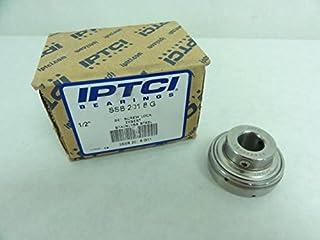 Bore D IPTCI Stainless Insert SSB 205 16 G Set Screw Lock