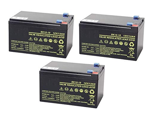 Kit de 3 batteries au ploMB RECHARGEABLE 12 V 36 V 12 Ah cyclique Batterie...