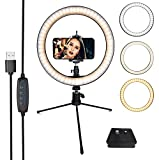 DaVoice 41mm Tripod Quick Release Plate for Ambico V-0554 Sunpak 7500 Pro 7500tm 7575, Kalimar Pro-Tech V-40 + LED Ring Light 10' with Tripod Stand & Phone Holder, 3 Light Modes & 10 Brightness Levels