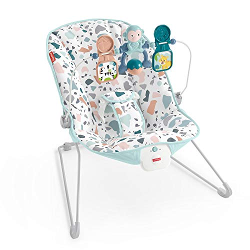 Fisher-Price GPH13 Baby's Bouncer, Multi-Coloured