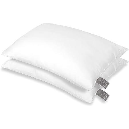FAM Home Oreiller 50x70 Lot de 2 Anti Acarien I Coussin Rectangulaire Moelleux Microfibre Douces Hypoallergenique Entretien Facile