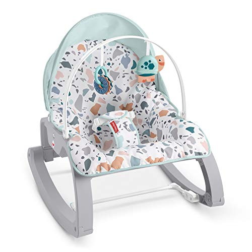 Fisher-Price Deluxe Infant-to-Toddler Rocker Seat – Pacific Pebble, Multi