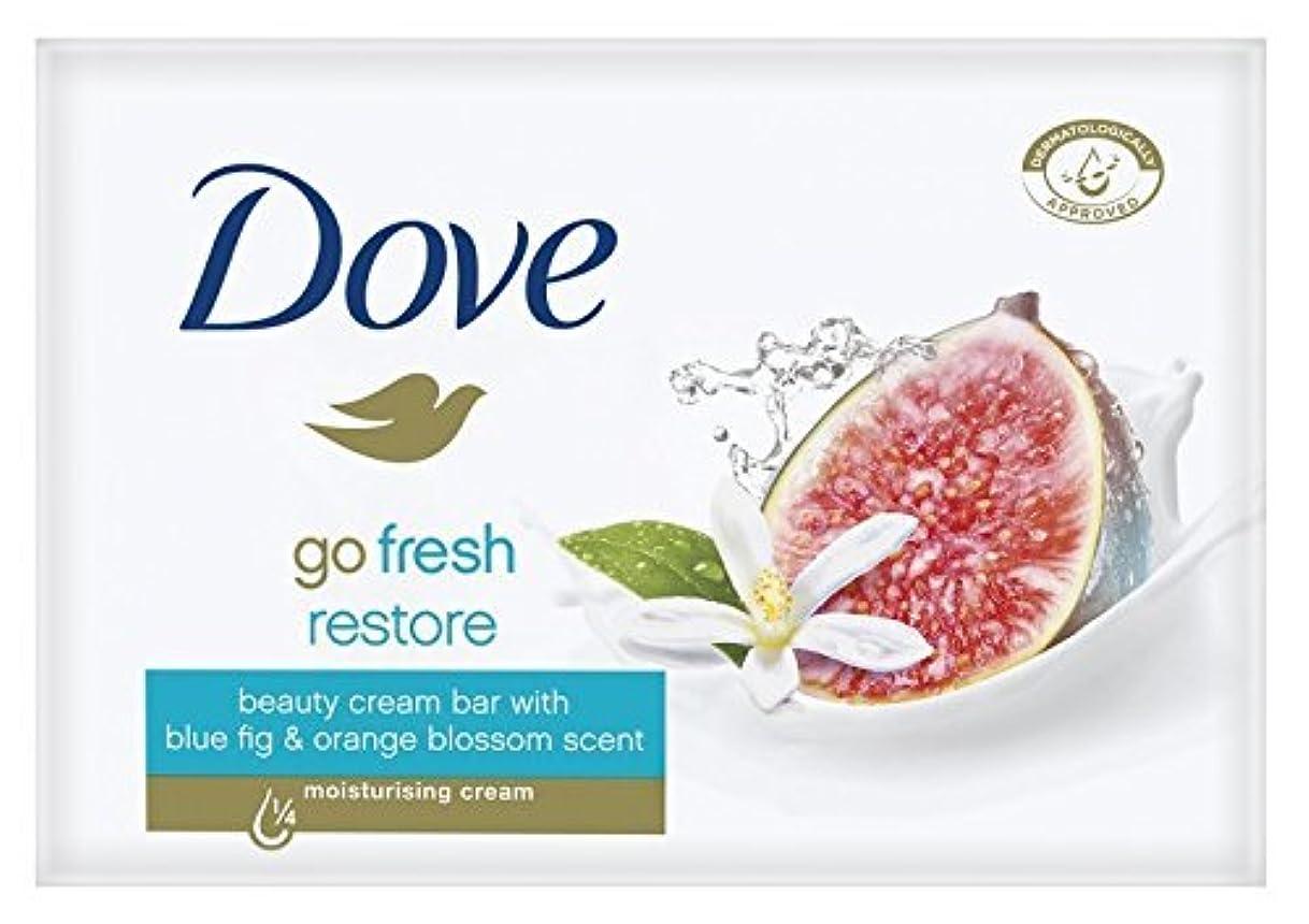 びん甘くする動かすDove Go Fresh Restore Beauty Bar Soap 3.5 Oz / 100 Gr (Pack of 12 Bars) by Dove [並行輸入品]