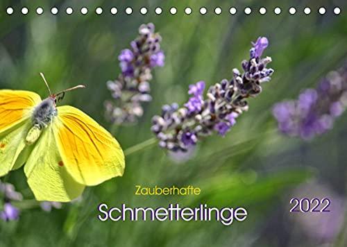 Zauberhafte Schmetterlinge (Tischkalender 2022 DIN A5 quer)