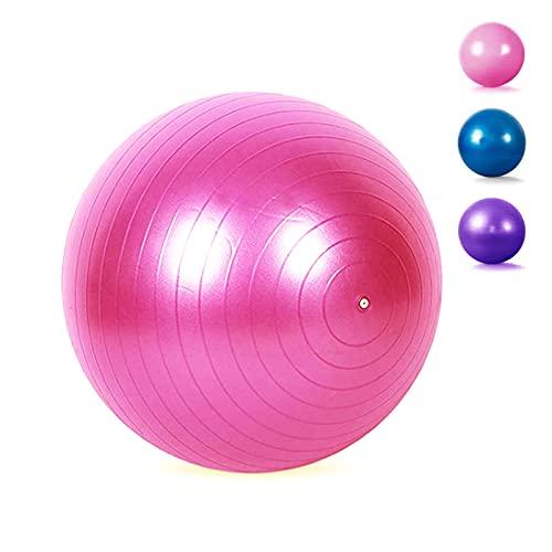 Pelota de Pilates, Pelota de Barra de 65 CM, Pelota de Yoga para Mini Ejercicio, Pelota de Bender pequeña, Pelota de Estabilidad para Pilates, Yoga, Entrenamiento del núcleo (Rosa)