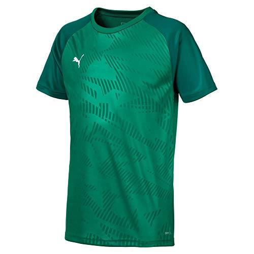 PUMA Kinder Cup Training Jersey Core Trainingsshirt, Pepper Green-Alpine Green, 116