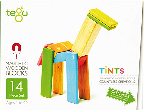 Image of 14 Piece Tegu Magnetic Wooden Block Set, Tints