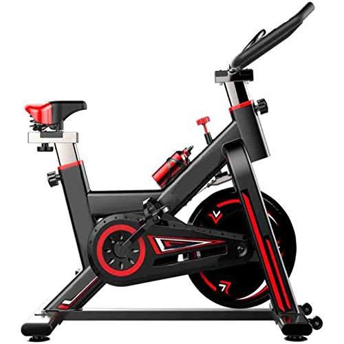 RJJBYY Bicicleta Estática Ajustable para Ejercicio Profesio