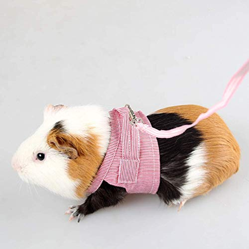 HEEPDD Small Animal Harness and Leash, Pet Front Harness Outdoor Vest Harness Clothes for Guinea Pigs Squirrels Hedgehogs Chinchillas and More(Red L)