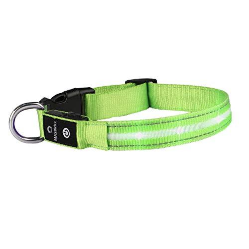 Leuchthalsband für Hunde Aufladbar LED Hundehalsband 100% Wasserdicht Blinkende Lichter mit USB von MASBRIL(M, 50cm, Grün)