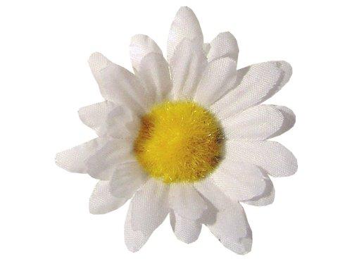 24x creme Margeriten Blumen Tischdeko Hochzeitsdekoration