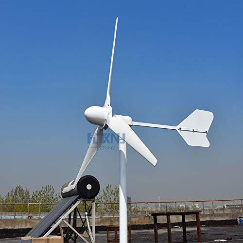 2000W 3000W 5000W turbina de viento 48v 96v 220v horizontal generador de viento energía libre alta eficiencia (2000W - 96V)