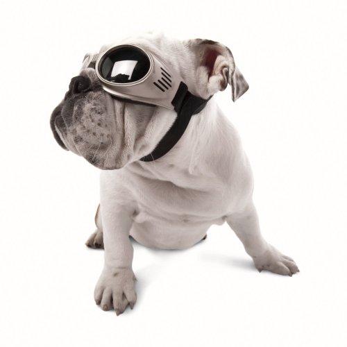 Doggles Originalz Medium Chrome Frame / Smoke Lenses