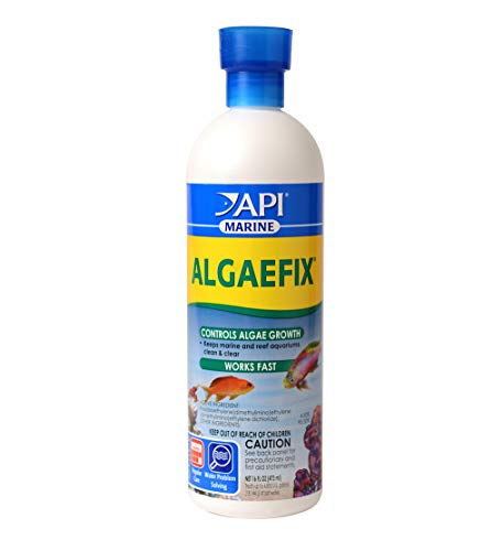 API MARINE ALGAEFIX Algae Control 16-Ounce Bottle