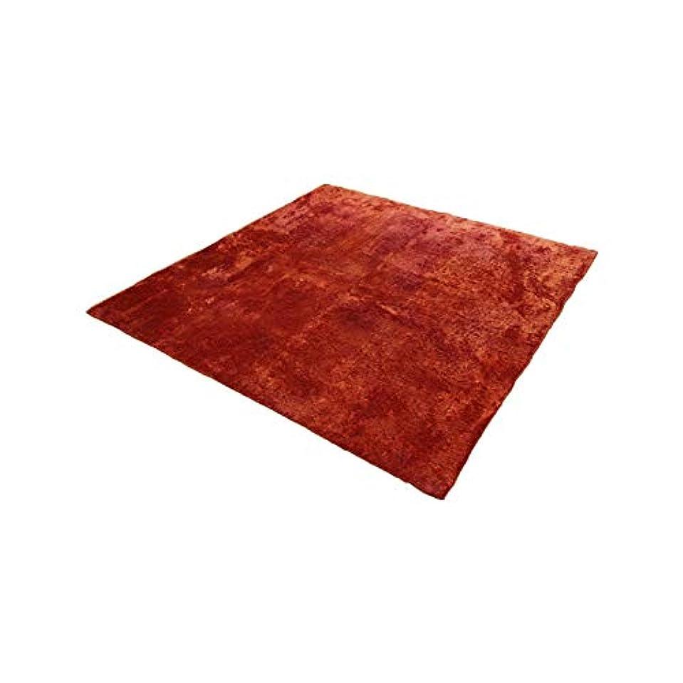 ウミウシ書道判決オレンジ/【130cm×185cm】ラグマット ラグ マット 長方形 リビング 部屋 カーペット 絨毯 オールシーズン 洗える 床暖房可能 滑り止め シャギー ホットカーペット対応 シンプル