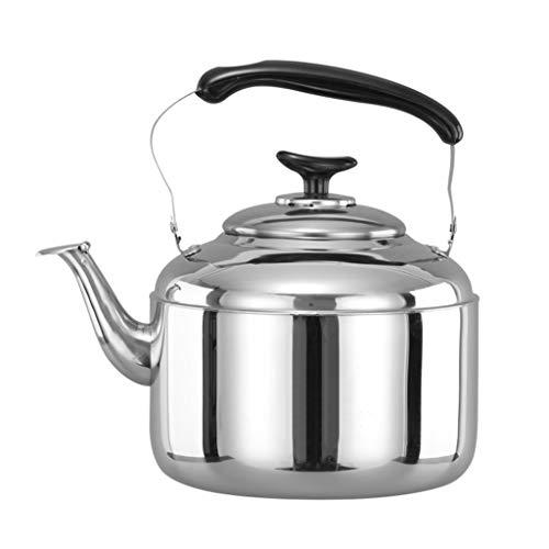 LCFF Bouilloire de santé de sifflet automatique de cuisinière à gaz 304 (taille : 4L)