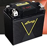 LILEAD T5 Lithium Motorcycle Battery 800 starting Amps with Lithium 10 Amp Charger included, ATX-20, Lithium Battery, G20, ETX680C,ETX36E, LFX36L3-BS12, AG-1601, DLFP30HL-BS-H, LFX36A3-BS12, MX30L
