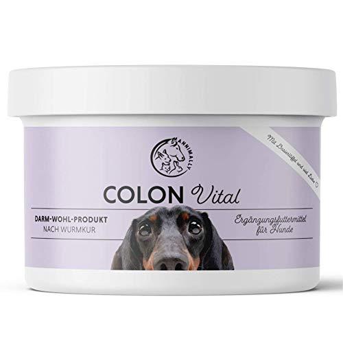 Annimally Hunde Darmkur Pulver 250g I Darmsanierung Hund Probiotika und Prebiotika zum Darmflora aufbauen - Ideal als Darmaufbau bei Durchfall, nach Wurmkur oder Magen Darm Infekt