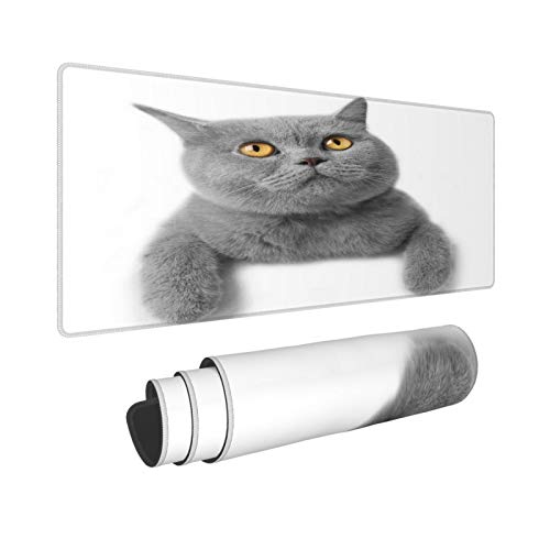 Extra Groß Mauspad mit Genähten Kanten,XL-75 x 40 x 0.3cm,Studio Grau Kätzchen Katze Weiß Rasse Britisch Kurzhaar Gra,Schreibtisch Mat Personalisiert für Die Arbeit Spiel Büro Computer Laptop