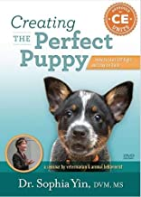 Creating the Perfect Puppy: How to Start Off Right and Stay On Track