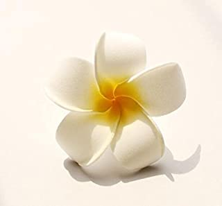 Best frangipani flower hair clip Reviews
