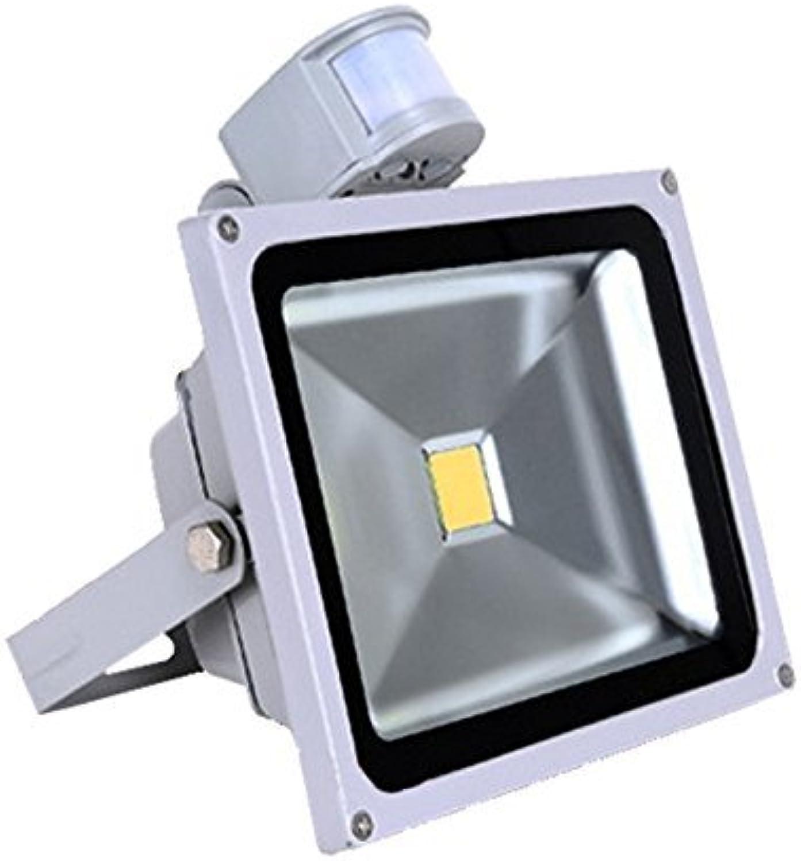 VINGO 50W LED Fluter Flutlicht Auen Strahler Bewegungsmelder Kaltwei mit PIR IP65 Scheinwerfer Auenstrahler Auenleuchten Wandstrahler