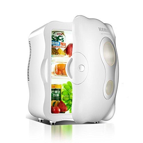 HAIZHEN Frigoriferi 10L Car Refrigerator Car Mini Frigo Piccola Famiglia Singola Porta Di Refrigerazione