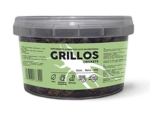 Feedect Grillo Deshidratado (60g) - Complemento Alimenticio Rico en Proteínas - 100% Natural - Comida para Pájaros, Aves de Corral, Tortugas, Saurios, Pogonas, Hámsters, Ratones, Pentauros, Jerbos