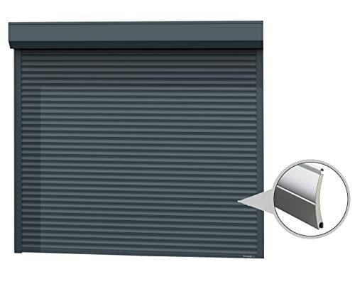 Doorhan - Puerta enrollable con Optokit + emisor manual, ancho 2200 mm, altura 2100 mm, color gris
