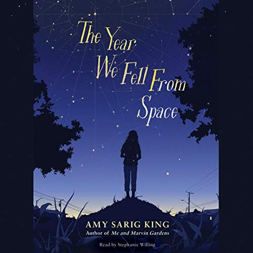 The Year We Fell from Space cover art