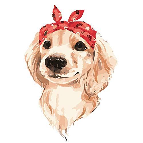 DMLGQ digitaal schilderij om te knutselen, olieverfschilderij, decoratie, door jezelf gemaakt: canvas, 40 x 50 cm, hond met haarband Encadrée