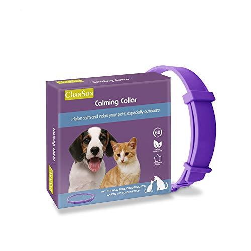 WDsunshine Beruhigungshalsband für Hunde und Katzen, Anti-Angst-Halsband mit Einstellbarer Größe, natürliches, sicheres, wasserdichtes Beruhigungsmittel für Katzen und Hunde, 1 Packung (groß)