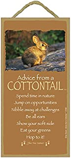 """SJT. Enterprises, INC. Advice from a Cottontail / 5"""" x 10"""" Wood Plaque, Sign - Licensed from Your True Nature (SJT67289)"""