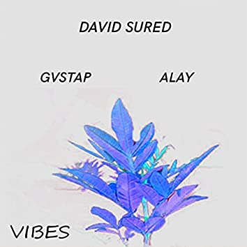 Vibes (feat. Alay)  (Extended Mix)