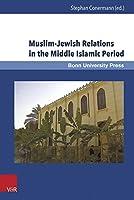 Muslim-Jewish Relations in the Middle Islamic Period: Jews in the Ayyubid and Mamluk Sultanates (1171-1517) (Mamluk Studies)