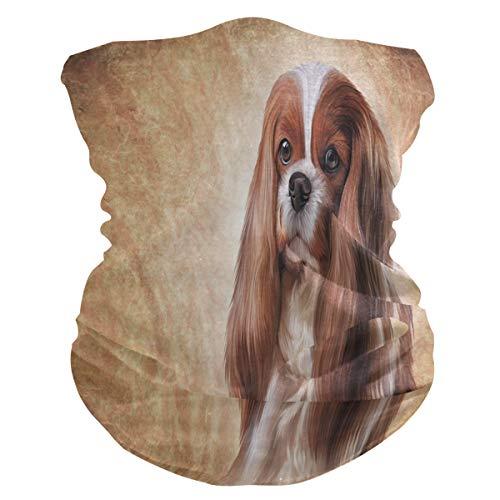 DOSHINE Bandana Gesichtsmaske mit süßem Hunde-Motiv, Kopfbedeckung, multifunktionale Sturmhaube, Stirnband, magischer Halswärmer, Gesichtsschutz für Radfahren, Staub, Outdoor-Sport