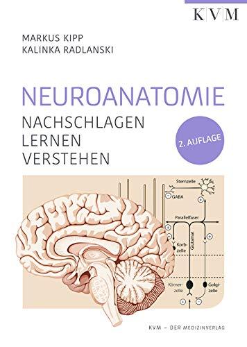 Neuroanatomie: Nachschlagen | Lernen | Verstehen