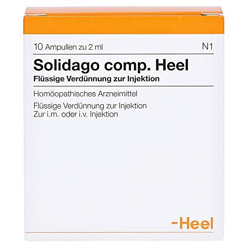 Solidago comp. Heel, 10 St. Ampullen