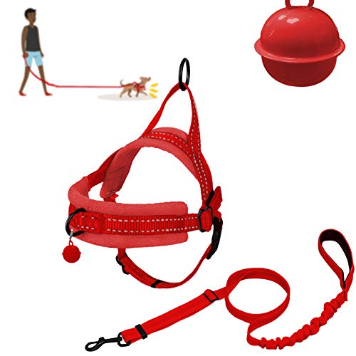 XIRGS Walking Dog Harness and Leash Set, Soft Flannel Padded Dog Halter & Lead No Pull Puppy Vest Adjustable Pet Training Harness Quick Fit Easy for Walking Running Training Small Dog (XXS, Red)