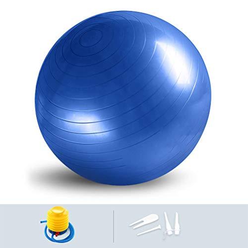 TIMESETL Gymnastikball Yogaball Pilates-Ball Sitzball, 65cm Matt PVC Fitnessball Anti-Berst-Stabilitätsball für hohe Beanspruchung, Balance Ball mit Ballpumpe für Übungen Gymnastik
